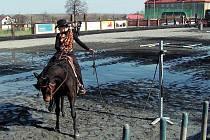Mazlavé bláto ztěžovalo jednotlivé disciplíny jak koním, tak jezdcům na jejich hřbetech.