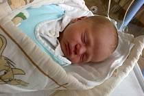 Jmenuji se JAN ŠESTÁK narodil jsem se 13. února ve Štemberské nemocnici, při narození jsem vážil 3560 gramů a měřil 49 centimetrů. Bydlím  v Bruntále.