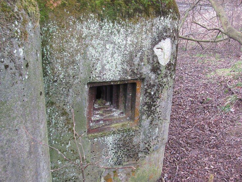 Obecní bunkr v Nových Heřminovech je typickým příkladem lehkého opevnění z let 1935 až 1938. V československém pohraničí vznikl tento obranný systém podle vzoru francouzské Maginotovy linie.