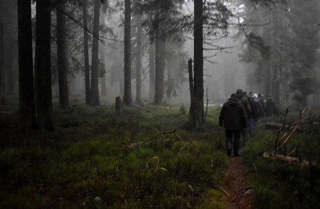 Chráněná krajinná oblast Jeseníky byly vyhlášena před padesáti lety. Toto výročí provázela exkurze, na které příroda Jeseníků předvedla účastníkům, jak dokáže být krásná a drsná.