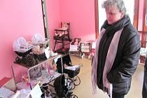 Hana Břicháčková (na snímku) začala s manželem Zdeňkem sbírat kočárky různého stáří, typů i velikostí. Brzy ke kočárkům přibyly panenky i další hračky, takže dnes sbírka zaplnila skoro celý rodinný dům v Městě Albrechticích.