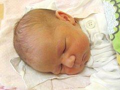 Jmenuji se ISABELLA KREJČOVÁ, narodila jsem se 26. června, při narození jsem vážila 2765 gramů a měřila 48 centimetrů. Rodiče se jmenují Pavlína a Vladimír, doma se na mě těší sestřička Patrície. Bydlíme ve Světlé Hoře.