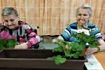 Domov pro seniory v Krnově. Snímek z programu volnočasových aktivit zdejších klientů.