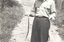 Jako mladík chytal Josef Podlas do rukou dvě zmije najednou. I když jde o hada jedovatého, při vhodném úchopu prý žádné uštknutí nehrozí.