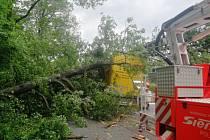 Na polský kamion spadly v Bruntálu-Kunově tři olše, pomohli mu hasiči.