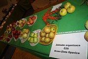 Tradiční krnovskou výstavu ovoce a zeleniny letos uspořádal Český zahrádkářský svaz v sále restaurace Pod věží.