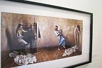 Helena Kadlčíková se proslavila především jako autorka portrétů Michaela jacksona. Ačkoliv nepatří mezi fanatické obdivovatelky tohoto zpěváka, strávila s ním i s jeho rodinou v Neverlandu několik měsíců.