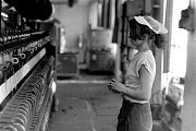 Krnovské textilky zanikly, ale jejich atmosféra zůstane navždy zachycena na snímcích Stanislava Bačovského, který je důvěrně znal. Dokázal propojit svou profesi seřizovače  textilních strojů a fotografickým talentem.