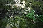 Razovské tufity je bývalý lom, ze kterého se stala chráněná přírodní památka.