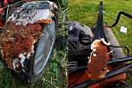 Rozplizlé plodnice dřevomorky vyrostly na kolech sekačky a na skluznici lyží. To je úlet!