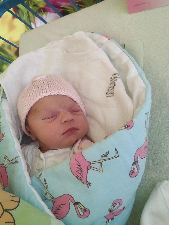 Jmenuji se Vanessa Králová, narodila jsem se 27.4. 2020. Při narození jsem vážila 3800 g a měřila 50 cm. Moje maminka se jmenuje Petra Komárková a tatínek Petr Král. Oba jsou na mě moc pyšní a strašně moc děkují personálu krnovské porodnice.