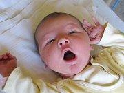 Vendula Kovaříková, narozena 20.9.2010, váha 2,85kg, míra 47cm, Staré Purkartice. Maminka Kamila Kovaříková, tatínek Petr Číšecký.