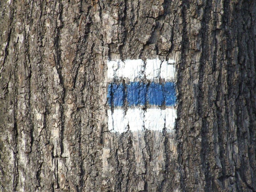 Stromy od nepaměti slouží turistickým značkařům i amatérským řezbářům.