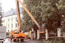 Ořez přebytečných věcí na Zámeckém náměstí a náměstí Jana Žižky v Bruntále, to byl úkol pro specializovanou firmu.