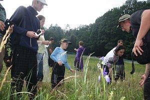 Poloparazitický kokrhel nám zajistí více květů a méně trávy