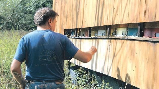 Zloději napáchali ve včelíně Františka Neumanna z Bruntálu škodu za pětadvacet tisíc korun.