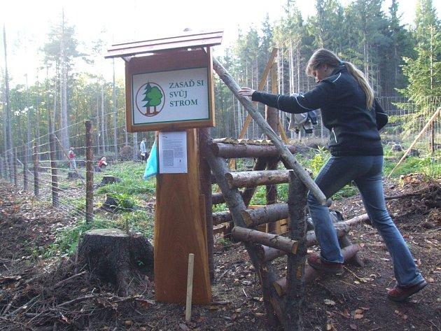 """Akce """"Zasaď si svůj strom"""" se v Krnově poprvé odehrála v roce 2008."""