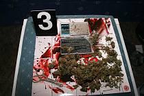 Při jedné z domovních prohlídek policisté chytili prodejce marihuany přímo při rozvažování do sáčků určených odběratelům, mladým narkomanům.