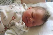 Jmenuji se ELIŠKA BILÍKOVÁ, narodila jsem se 8. července, při narození jsem vážila 3100 gramů a měřila 49 centimetrů. Moje maminka se jmenuje Michaela Bilíková a můj tatínek se jmenuje Lukáš Bilík. Bydlíme v Bruntále.