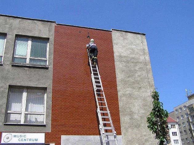 Větší pták uvízl na budově Městského úřadu v Krnově. Zachránili jej až hasiči.