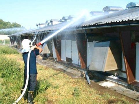 Přehřáté budovy drůbežárny ve Městě Albrechticích museli chladit hasiči ze čtyř jednotek profesionálních i dobrovolných hasičů. Teploty kolem 37 stupňů v budovách drůbežárny začaly ohrožovat na životě stovky kusů drůbeže.