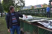 Vydařená chovatelská výstava ve Vrbně pod Pradědem.