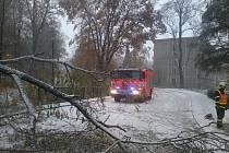 Snímky ze zásahu hasičů na Bruntálsku.