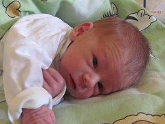 Jmenuji se ALENA ZBOŘILOVÁ, narodila jsem se 5. června 2017, při narození jsem vážila 2610 gramů a měřila 46 centimetrů. Moje maminka se jmenuje Monika Tomaščáková a můj tatínek se jmenuje Filip Zbořil. Bydlíme v Bruntále.