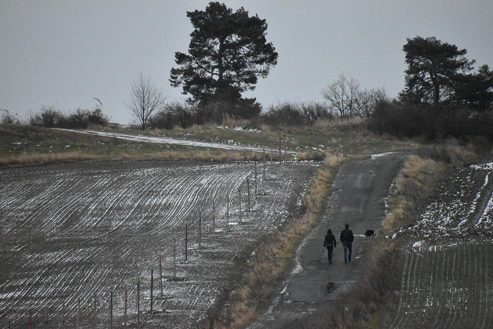 Cestu mezi poli nad krnovským letištěm od konce listopadu lemuje alej 55 hrušní. Jednou to budou dlouhověké vysokokmeny starých regionálních odrůd.