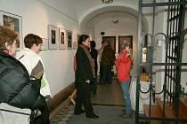 Výstava zachycuje značne poškozené obrazy pred restaurováním, samotný průběh restaurování a konečný výsledek.