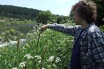 Záviš Polák z Bruntálu je milovníkem přírody, který jezdí pravidelně několikrát týdně ve své režii uklízet vodní plochy a jejich okolí.