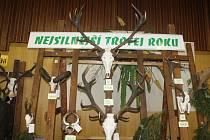 Výstavu trofejí v Rýmařově.