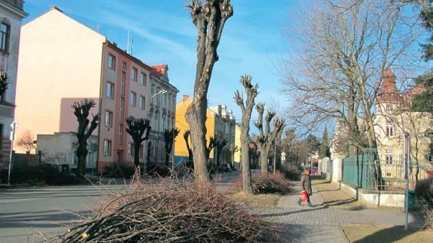 Lípy na Mikulášské ulici dostaly sestřih nakrátko, takže dnes vypadají, jako kdyby šly přímo od holiče.