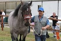 Historicky první vozatajské závody se jako kvalifikace na mistrovství republiky proběhly v sobotu 25. srpna na Ekofarmě Lomnice manželů Vladimíra a Zuzany Juráňových. Bylo co obdivovat – statné koně, i nejšikovnější vozky Česka.