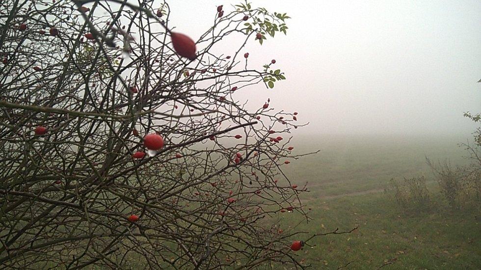 Krajinu zahalila mlha