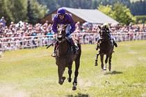 V sobotu si ve Světlé Hoře dali dostaveníčko milovníci dostihového sportu. Přišlo jich okolo pěti tisíc. Už potřiadvacáté se tady konal veliký svátek koní, tradiční Dostihový den.