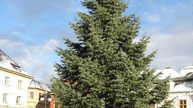 Vánoční stromeček stojí od středy 24. listopadu na náměstí Míru v Bruntále.