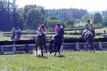 Vítězem dostihů v soutěži nazvané Cena stáje Wrbna Racing se stal kůň Valldemoso s žokejem Miroslavem Stancíkem.