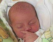 Jmenuji se VOJTĚCH KOZŮBEK, narodil jsem se 12. Prosince 2018, při narození jsem vážil 3520 gramů a měřil 50 centimetrů. Vrbno pod Pradědem
