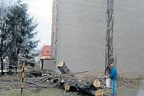 Topoly byly starší než celé sousední sídliště Budovatelů. Byly poslední vzpomínkou na větrolam, který chránil Krnov před větry ze severu. Radnice je nechala pokácet a chce zapojit veřejnost do rozhodování, čím odstraněné stromy nahradit.