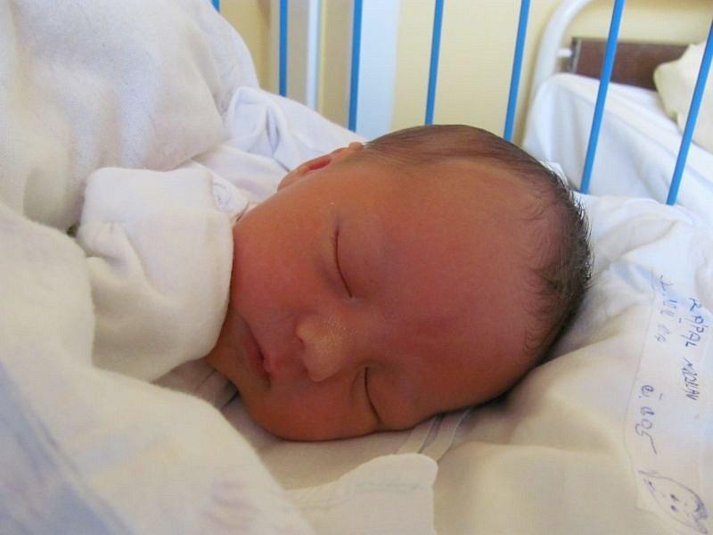 Jmenuji se MIROSLAV DRÁPAL a narodil jsem se 22. října 2012, měřil jsem 49 centimetrů a vážil jsem 3165 gramů. Moje maminka se jmenuje Sylva Drápalová a tatínek se jmenuje Miroslav Jahoda. Bydlíme v Rýmařově.