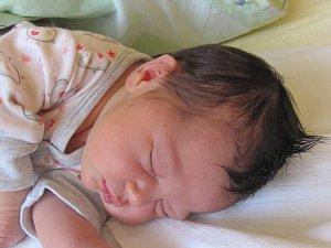 Jmenuji se ADÉLA DORIČÁKOVÁ, narodila jsem se 15. Dubna 2018, při narození jsem vážila 3400 gramů a měřila 48 centimetrů. Moje maminka se jmenuje Adéla Doričáková a můj tatínek se jmenuje Michal Doričák. Bydlíme v Radimi.