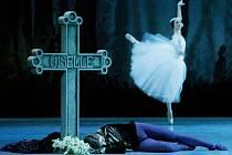 Milovníci baletu se už těší na sobotu 22. října, kdy kino představí romantickou Giselle v podání špičkového ruského baletního souboru ze St. Petěrsburgu.