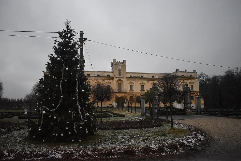 Nazdobený vánoční strom před zámkem Slezské Rudoltice.