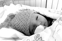 Jmenuji se Teodor Gubčo, narodil jsem se 22. Února 2018, při narození jsem vážil 3430 gramů a měřil 48 centimetů. Moje maminka se jmenuje Nikola Lusková a můj tatínek se jmenuje David Gubčo. Bydlíme ve Frýdku-Místku.