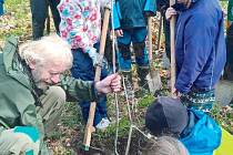 Pracovník správy Chráněné krajinné oblasti Jeseníky Dušan Duhonský předvádí dětem, jak správně vykopat jámu a zasadit strom.