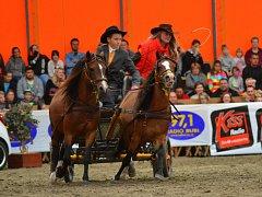 Milovníci koní se na charitativní akci v jezdeckém areálu stáje Kincl ve Skalách u Rýmařova měli nač dívat.