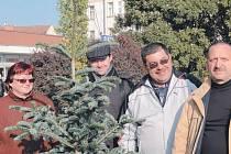 Jedle vysazená na náměstí Minoritů bude připomínat uzavření partnerství Krnova s ukrajinským Nadvirne.