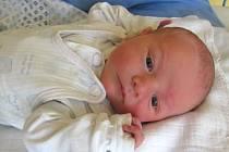 Jmenuji se JAN ŠAMÁNEK, narodil jsem se 28. března, při narození jsem vážil 3135 gramů a měřil 48 centimetrů. Moje maminka se jmenuje Zdeňka Šamánková a můj tatínek se jmenuje Stanislav Šamánek. Bydlíme v Bruntále.