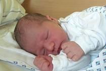 Jmenuji se TOBIAS MIKEŠ, narodil jsem se 30. října. Při narození jsem vážil 2935 gramů a měřil 47 centimetrů. Moje maminka se jmenuje Hana Mikešová a můj tatínek se jmenuje Martin Mališ. Bydlíme v Bruntále.